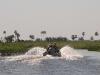 wd-pantanal-2008-031
