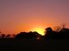 wd-pantanal-2008-154